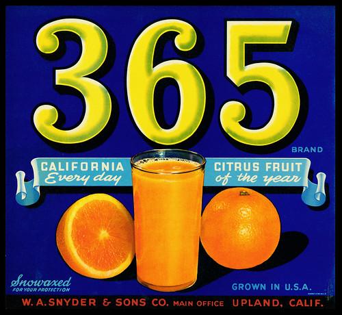 365 brand | by mcatalena