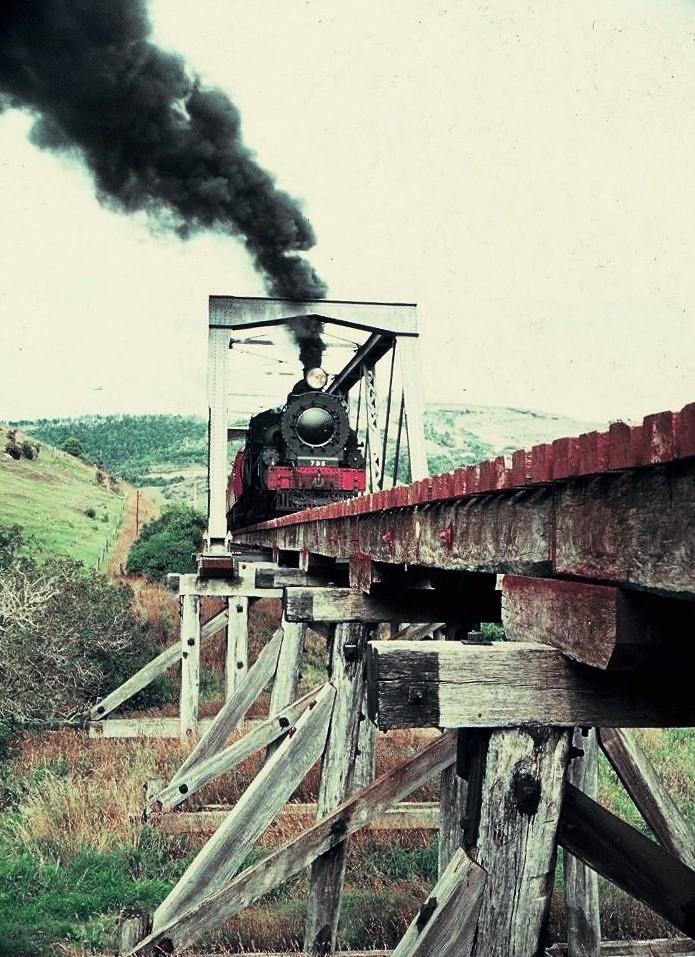 Last Catlins run Ab 795 on wooden trestle