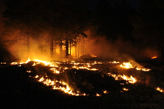 89 Mesa Fire, 5/6/10   by Coconino National Forest