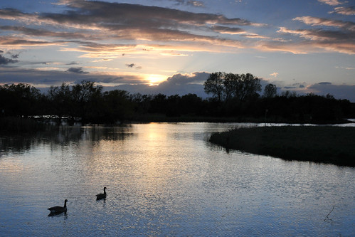 park sunset canada water creek reflections geese kansas wichita chisholm chisholmcreekpark