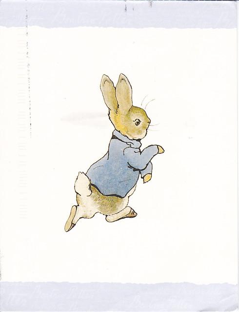 Beatrix Potter Peter Rabbit Postcard