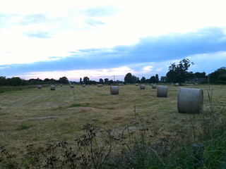 Fields near Buscot Lock | by Tip Tours
