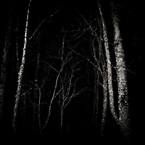 pictures in the dark | by Helen Suzanne