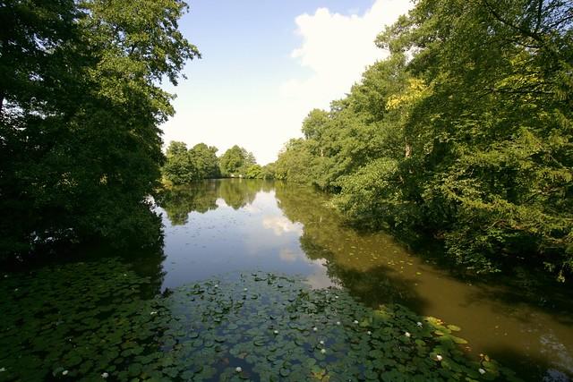 the lake @ chiddingstone kent.