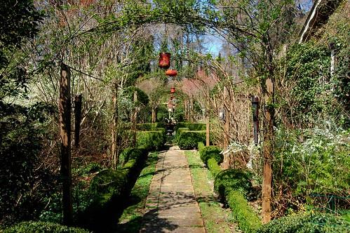 Looking into Ryan Gainey's Garden in the Lenox Park Neighborhood in East Atlanta | by UGArdener