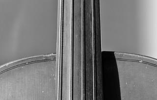 Celloshapes