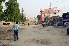 インドの道には野良ウシだらけ | by kimama_labo