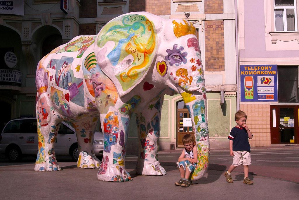 Słoń / Elephant