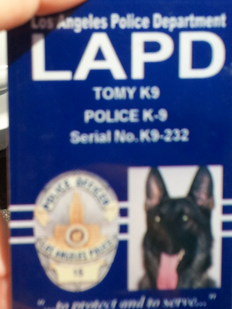 Flickr Lapd This Card Dog His… Identification Bomb-sniffing Has K9
