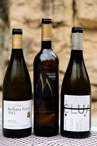 Catalonia Wine Tour | by Sarka Babicka Photography