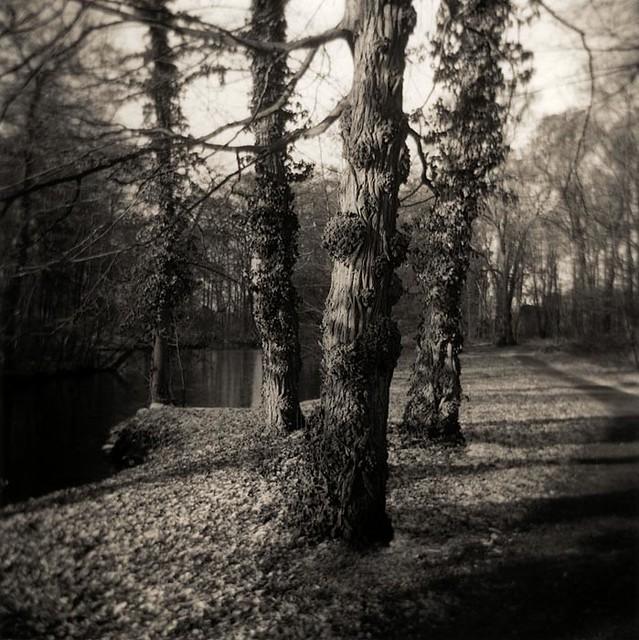 Silvesterspaziergang im Schloßpark Brühl mit Kyra und Holga
