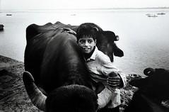09_インド1   by Isao Kawamura