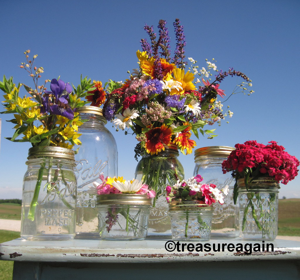 Flickr & Ball Jar Mason Jar Flower Frog Vases- Clear 7 sizes | Flickr