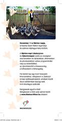 2010. október 28. 17:38 - Ker(G)essük együtt Mártont a libát!