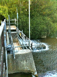 Cresting weir by Buscot Lock | by Tip Tours