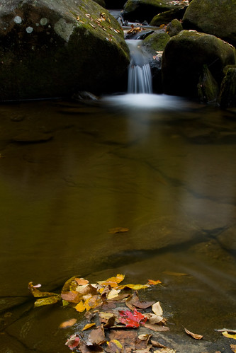 longexposure autumn fall water nc moss rocks northcarolina cascade southmountainsstatepark burkecounty jacobsforkriver davidhopkinsphotography photocontestfall10 ncpedia