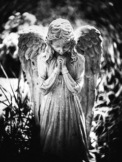 Praying Angel | by rickmcnelly