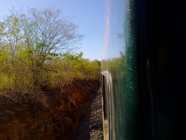View of the Chepe train