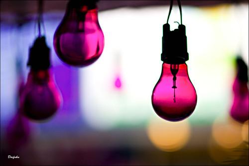japan geotagged tokyo nikon bokeh lightbulbs explore frontpage shimokitazawa d300 85mmf14 geo:lon=139668243 samyangvivitarrokinonetc geo:lat=35661094 35°3940n 139°4006e someyummythairestaurant purplelightbulbs kindofsooc
