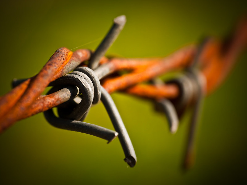 Spring Barbed Wire