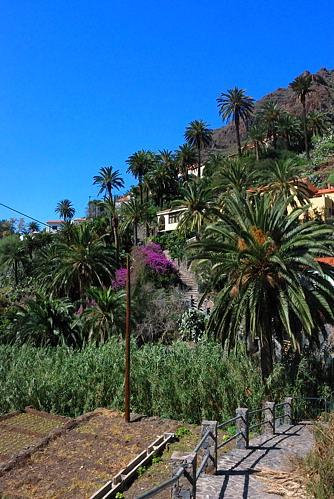 Gomera - El Guro - Wanderung zum Wasserfall