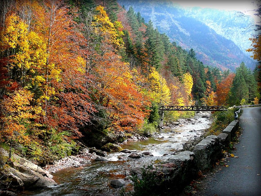Selva De Oza Huesca Río Aragón Subordán Canduela Flickr