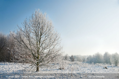 Mortsel, Klein-Zwitserland, winterbeeld
