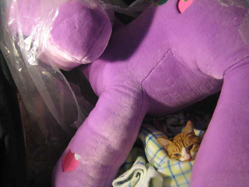 under a gaint pony is my bed