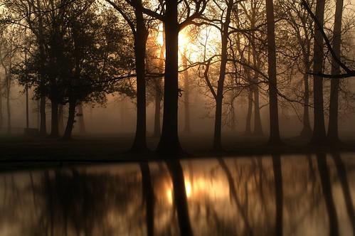 morning reflection fog sunrise day