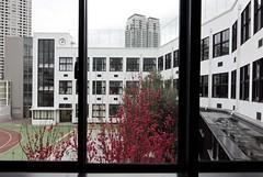 Takanawadai Elementary school 高輪台小学校25   by scarletgreen