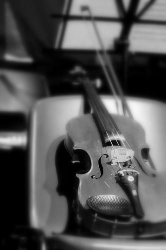 Primo violino