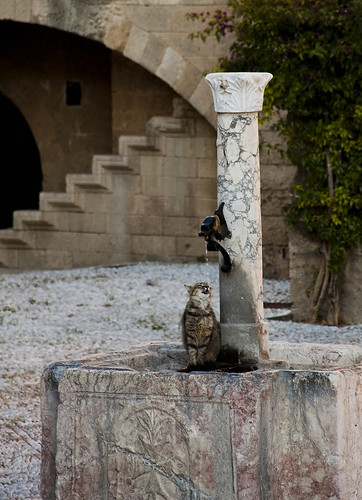 rhodes-cat-fountain | by Maggie & David