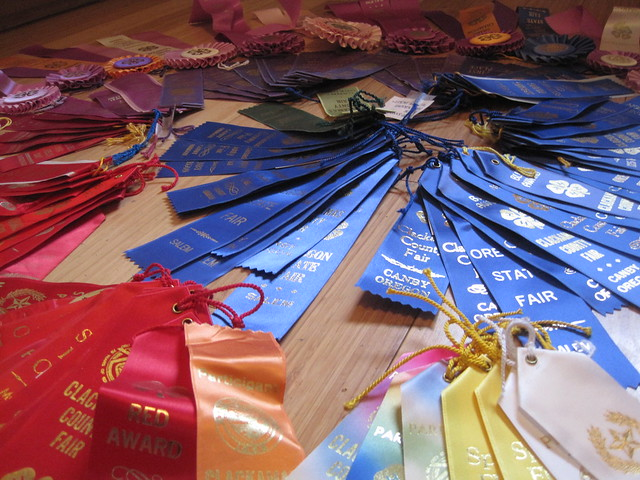 so many ribbons