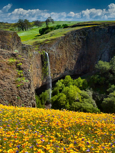 california landscape waterfall landmark olympus pa poppies wildflowers e3 lupin californiapoppy centralvalley oroville buttecounty californialandscape happyhours zd 1260mm olympuse3 kitchen428