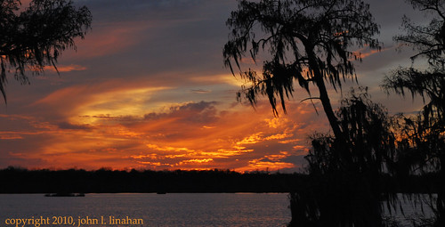 sunset sky orange lake water silhouette yellow clouds landscape nikon louisiana purple 2010 cypresstree d60 breauxbridge 2491