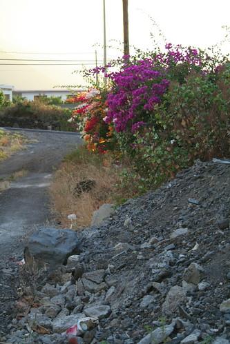 Rincón de Frontera