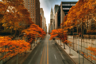 Fall in New York City | by mudpig