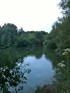 Cresting weir pool near Buscot Lock   by Tip Tours