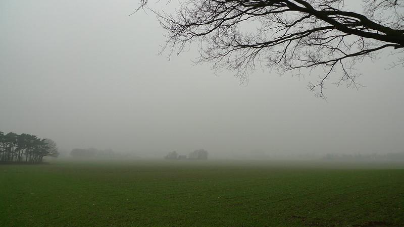 Mist / Fog