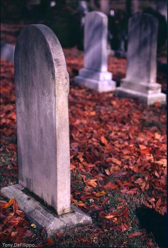 autumn orange usa color fall film nature graveyard leaves virginia tombstone va dcist delaplane fujivelvia50 nikonf5 nikon3570f28 vawinecountry nikon3570mm28 placesspecific