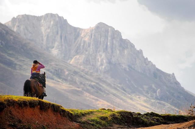Tibetan བོད་པ Horsewoman