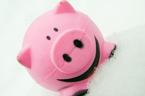 Smile Pink Squishy Pig in Snow 2-24-10 3 | by stevendepolo