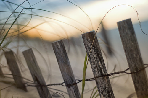 fencefriday hff pensacolabeach florida gulfislandsnationalseashore beach sand sunrise nirvana locationlocationlocation frontpageexplore gettyimages pixelmama explore