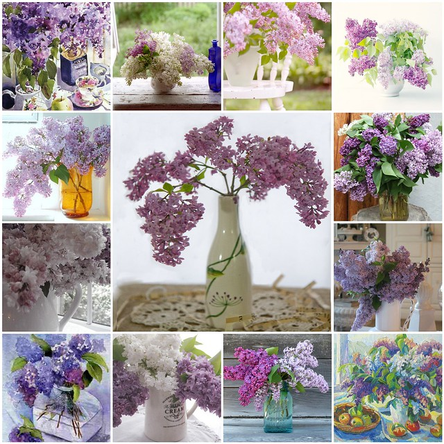 Isn't it amazing how lilacs need no fillers to make such beautiful bouquets? They need no pretense or cosmetic additions to bring out their beauty. That is the way I someday hope to view all mankind including myself, beautiful just the way God made us.