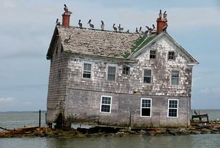 Last House on Holland Island, May 2010 | by baldeaglebluff