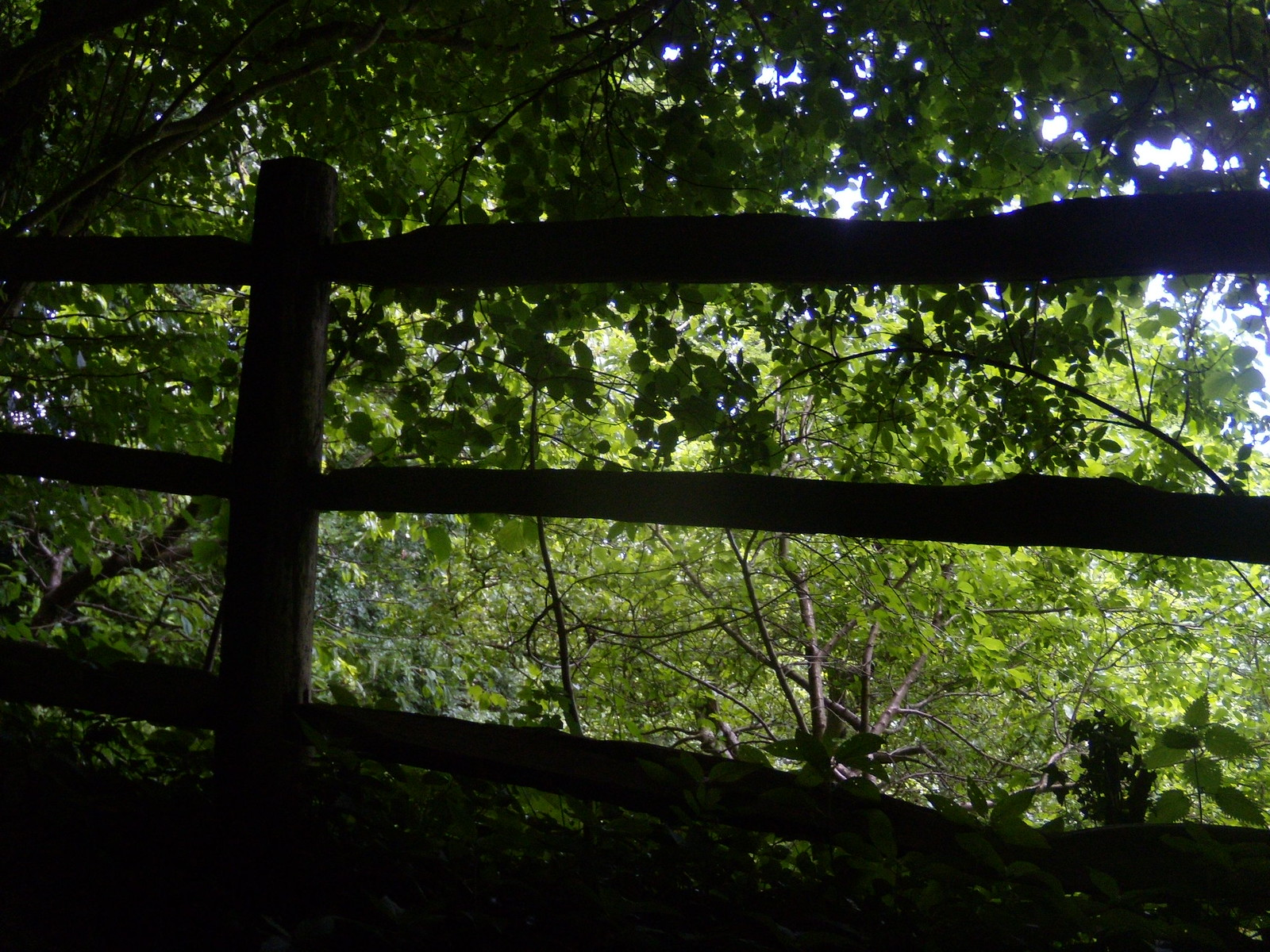Fence Sevenoaks Circular Greensand Way