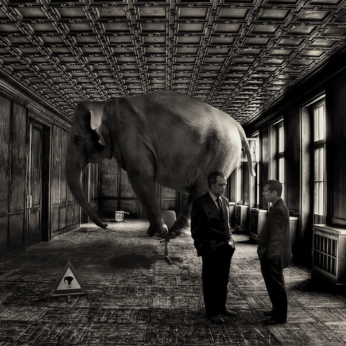 Afterwards Tom and Eric weren't exactly sure at which point during their discussion the elephant had entered the room | by David Blackwell.