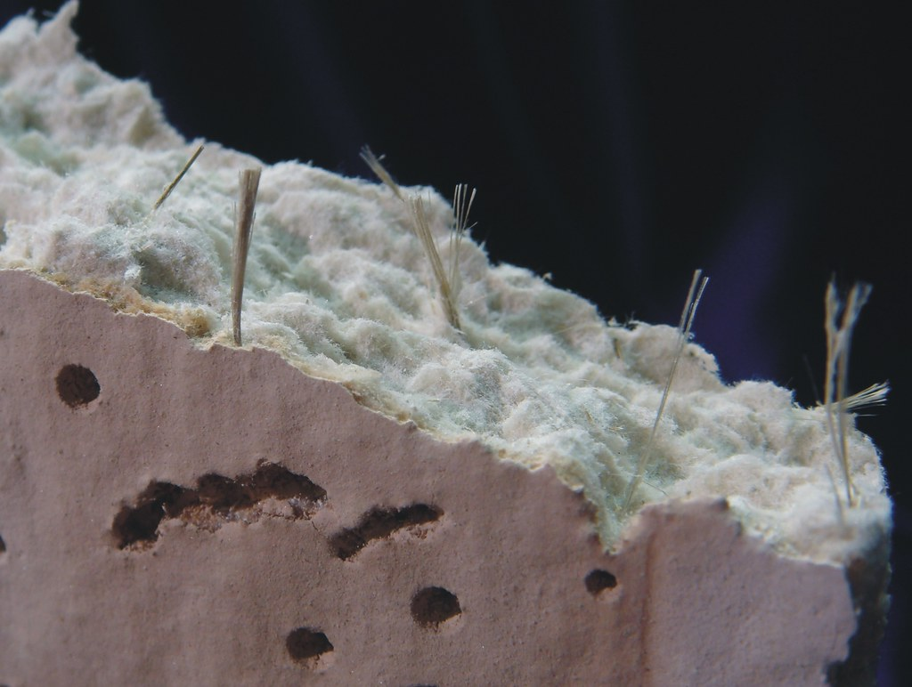 Amosite Fiber Bundles In Asbestos Ceiling Tile Close Up