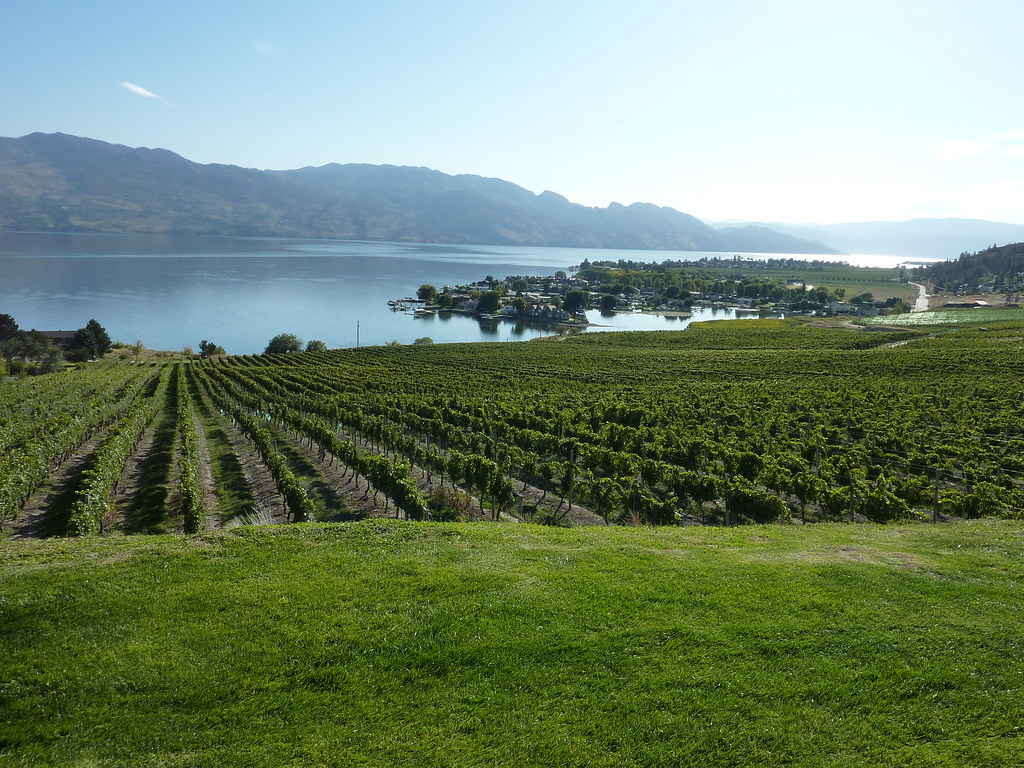 Quails Gate Winery Kelowna British Columbia Www