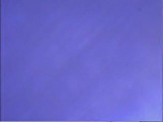 2010-04-21 ucam v0.2 screencap leaf 480p